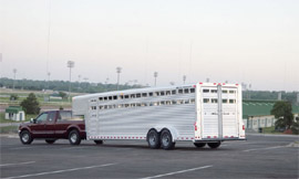 Elite Horse Trailers for sale